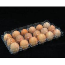 Яйцо для куриных яиц