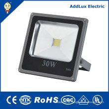 A ESPIGA 30W do CE de 220V IP66 aquece a luz de inundação branca do diodo emissor de luz