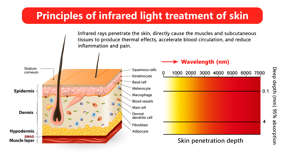 Red Light Therapy For Knee