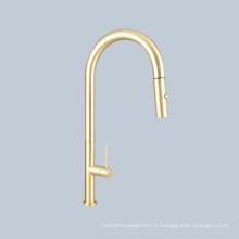 Lavabo lavabo interrupteur poignée doré robinet télescopique