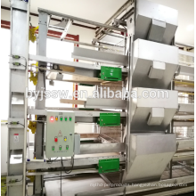 Automatic Chicken Feeding Equipment For Sale