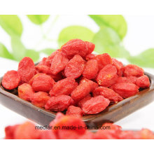 Medlar Health Food Himalayan Goji Berry