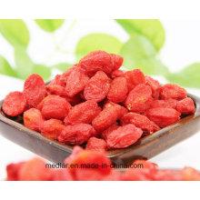 Aliments de santé de nèfle Himalayan Goji Berry