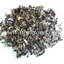 Агарикс, сухое органическое зеленое Натуральные черные грибные ломтики