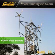 Protable Camping Wind Turbine Generator para Wind Solar Power System (MAX 600W)
