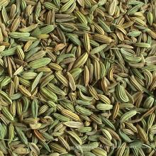 Sacos de 25kgs / 50kgs PP China best-seller sementes de funcho