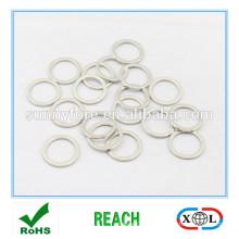 klein-Ring-Neodym-Magneten zum Verkauf