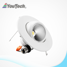 5000K Daylight 950lm a mené le downlight