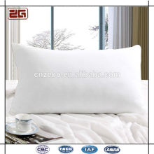 Factory Wholesale Elegant Piping Double Stitching Duck Down Pillow for Hotel