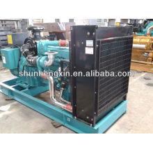 250kw / 312.5kva Generador Diesel Obtener Powered by Cummins Engine (MTAA11-G3)