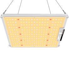 Panel de luz de cultivo de 200W para Amazon Ebay