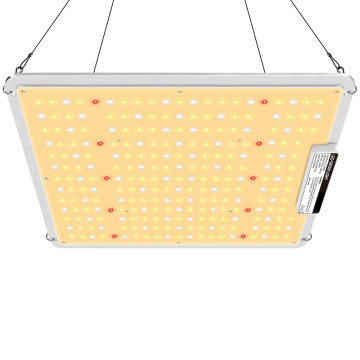 200W LED Grow Glühbirnen UK
