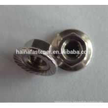 Stainless Steel Serrated Flange Nut