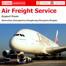Service rapide de fret aérien / fret aérien / coût d'expédition d'air de la Chine au monde entier (service de fret aérien)