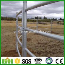 Panneau de clôture à cheval galvanisé peu coûteux / clôture de cheval Paddock