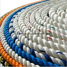 Corde à 3 fils en polyamide