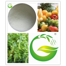 Mn Chelated EDTA Fertilizantes Orgânicos