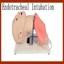 Продвинутая модель обучения эндотрахеальной интубации человека