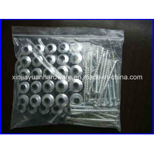Hot Selling Africa Market Roof Screw with Washer