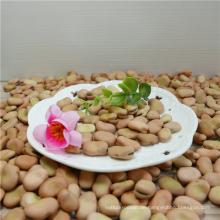 Sojabohnen gelbe Bohnen 2016 Ernte guten Preis hohe Qualität