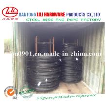 Fil en acier sphéroïdal (usine)