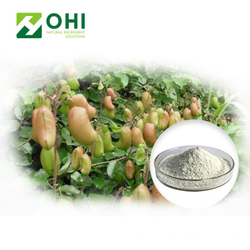 Bột chiết xuất Griffonia simplicifolia 5 htp