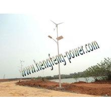 sell wind&solar hybrid street LED lamp