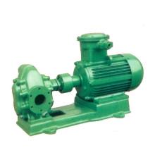 KCB/2cy aus Gusseisen oder Edelstahl Öl Außenzahnradpumpe