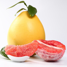 2021 Export Price High Quality Wholesale China Fresh Fruit Red Pomelo