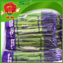 2015 Chinese organic vegetables New fresh celery