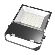 5 Years Warranty 100W LED Floodlight with Ce, RoHS Certificate, Meanwell Driver