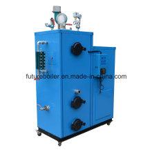 Generador de vapor de biomasa 100kg compacto