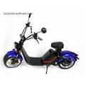 Eec Electric Citycoco HL-3.0 Harley Roller Citycoco