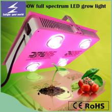 Hot Sale Square Full Spectrum LED Grow Light