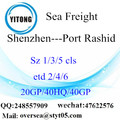 Shenzhen Port Sea Freight Shipping Rasyid Port