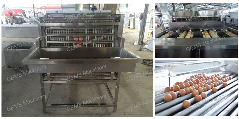 Boiled Egg Peeling Machine 1