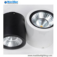 15W Surface Mounted CREE COB LED Downlight