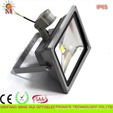 Ce / RoHS / SAA / Wasserdicht / 20W LED Flutlicht mit Bewegungssensor