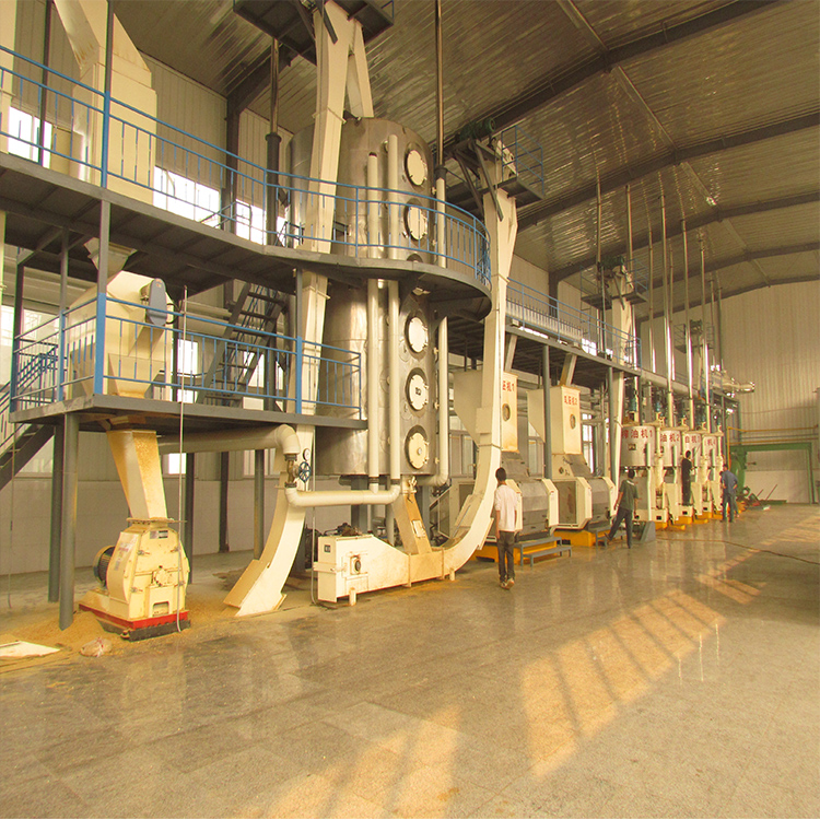 Seed Oil Production Line
