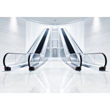 IFE  GRACES-ID Commercial Indoor Escalator