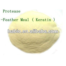 Microbe Protease !!! Feather Meal, Soybeal meal, Fish Meal, etc. Hidrógeno con alta eficiencia