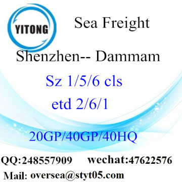 Shenzhen Port Sea Freight Shipping Stores
