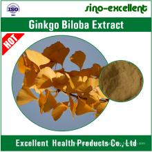 24% Flavones 6% Lactones Natural Ginkgo Biloba Leaf Extract