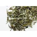 Fuding Melhores marcas de chá branco