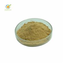 Zebrago Supply Pueraria Mirifica Extract 98% Puerarin