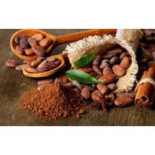 Ingredientes de cacao y chocolate