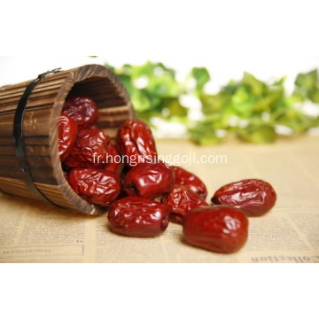 Dates rouges chinoises Hong Zao