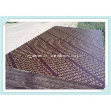 18mm Shuttering Plywood for Construction
