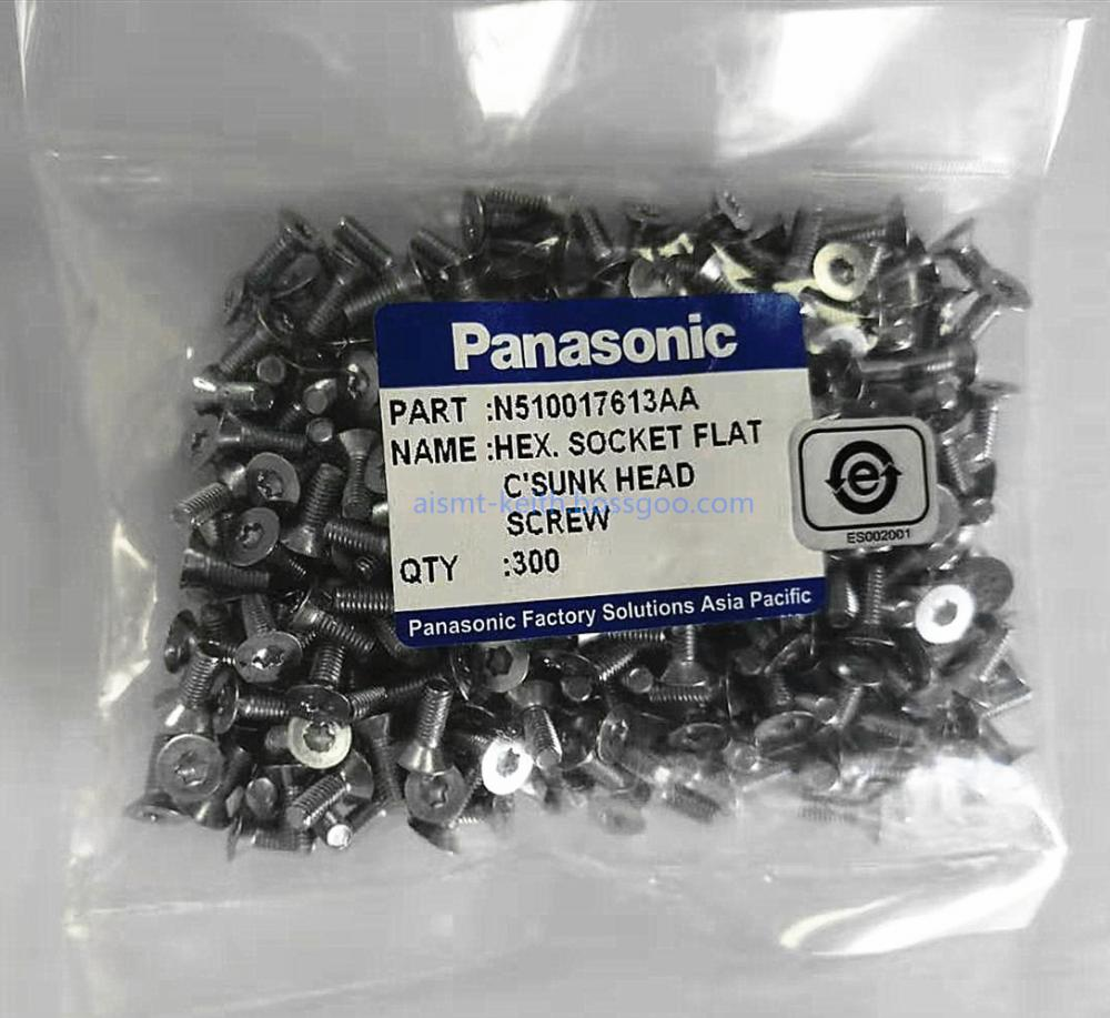 N510017613aa Hex Socket Flat C Sunk Head Screw