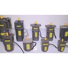 Induction Motor 6W 220V Small AC Gear Motor